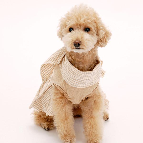 オーガニックコットン犬の服
