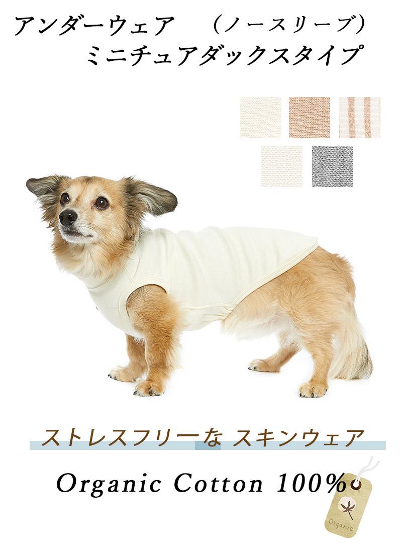 犬のアンダーウェア 肌着 ダックス ノースリーブ