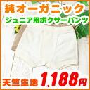 Junior kids underwear ( 120・130 and 140・150 cm ) Boxer shorts Organic cotton, Kid's kids boys girls