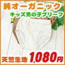 キッズブ leaf boys underwear ( 90-100・110 cm ) organic cotton, inner child, Briefs Underwear