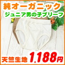 Kids briefs boys underwear ( 120・130 and 140・150 cm ) Kid's children and atopic skin-friendly organic cotton inner Briefs