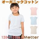 쥬니어 여자 아이 내의(120・130・140・150 cm) 아토피피부에 상냥한 오가닉 코튼의 아이 여아 이너 T-shirt