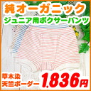 Junior kids underwear ( 120.130 and 140.150 cm ) Boxer shorts Organic cotton, Kid's children