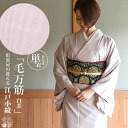 It is shipment on the washing same day on a day of the Toray material street clothes shop original kimono (unlined clothes) Edo-dyed clothe, filiform lines (light brown-colored / M, large size) wedding ceremony banquet abbreviation formal dress tea party