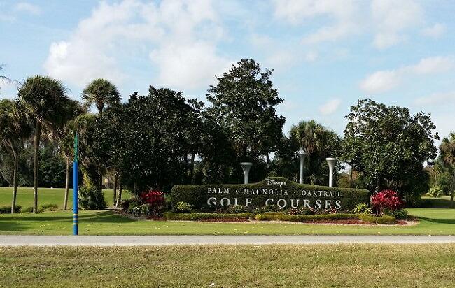 Zithromax Resistance Rates In Orlando Florida