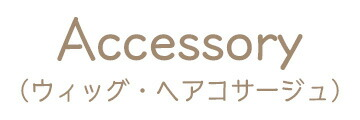 Acccessory.jpg(19938 byte)