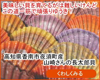 山崎さんの長太郎貝