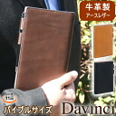 da Vinci Grande ground leather leather system notebook Bible size B6
