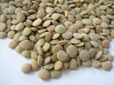 2004 24 Annual US produced lentils 500 g on 05P02jun13