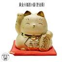 Gold + right hand lead strong luck! Golden Daifuku Maneki Neko (money box)