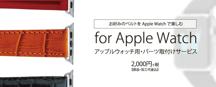 Apple Watchコネクター