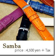 SAMBA(�����)