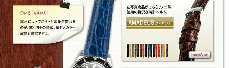AMADEUS/���ޥǥ���