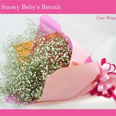 誕生日にカスミ草の花束