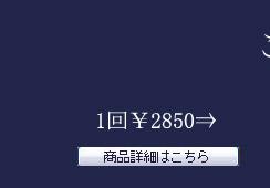 ご予算¥2850の命日の花