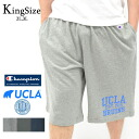 "Big size! All Champion/ champion C3-D5509 - double dry material ... three colors! 2L 3L ""U.C.L.A."" sweat shirt short pants"
