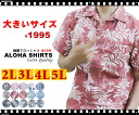 Rakuten ranking Prize! ' 2012 Overboard Roushatte / cotton back キングアロハ Shirt-2 L, 3 L, 4 L, 5 L ~