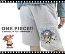 "47% Off ONE PIECE / one piece LOVELY CHOPPER! ""Tony Tony chopper' color scheme change shorts"