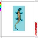 Imitation lizard AF029