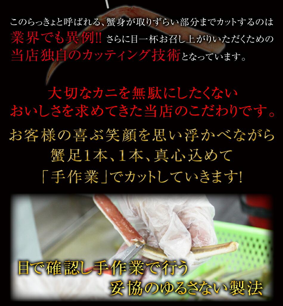 hp_2015_hp1200_23a.jpg