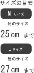 サイズの目安