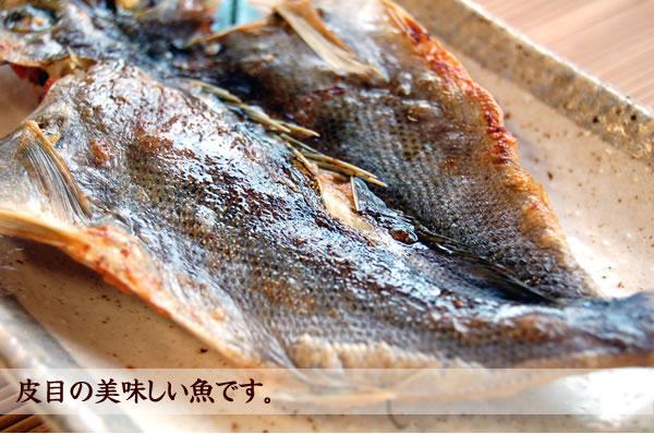 いさきは皮が美味しい魚です