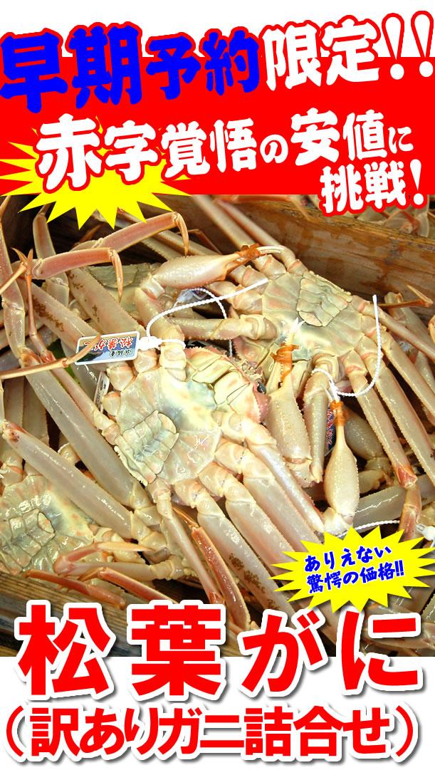 松葉ガニ 2-3枚入り 3980円
