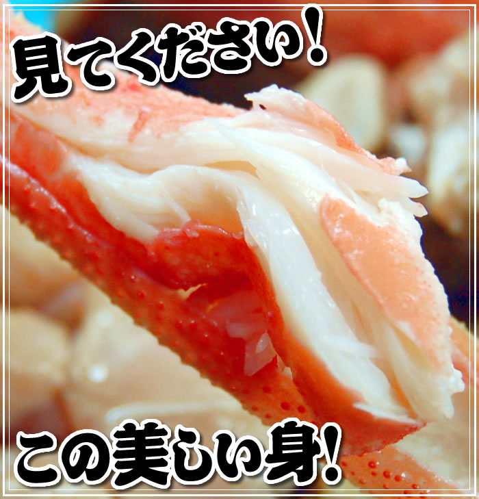 松葉ガニの美しい身肉