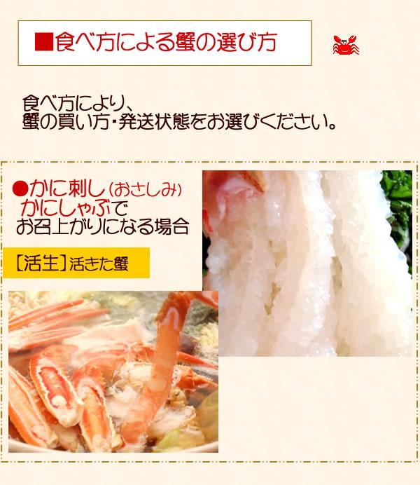 マツバガニの食べ方と選び方