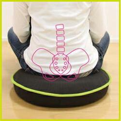骨盤座椅子「背筋がグーン 美姿勢座椅子」