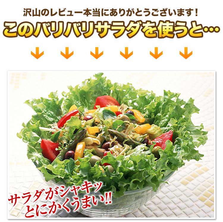 【野菜水切り器バリバリサラダ[スタッフおすすめ]】