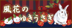 メタモルフォーゼ:yukiusagi