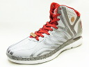 4.5 adidas Adidas D ROSE Derrick Rose clear grey/scarlet clear gray / scar red sneakers basketball 14SS