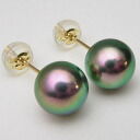 Pt900/K18/K14WG Akoya pearl earrings (green blue) (SV earrings, charm) ewm-5805 (Oh here or this Pearl Akoya this Pearl Oh Akoya pearl Black Pearl Japanese Pearl Pearl Earrings genuine Pearl Pearl directly connected to 18 Gold Flower Pearl Pearl quality