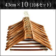 43cm×10本セット