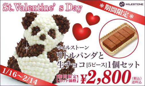 リトルパンダと生チョコ1個セット