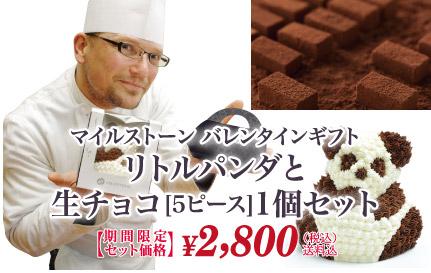 リトルパンダと生チョコ5ピース1個セット