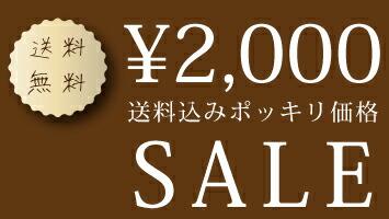 2,000円送料無料セール