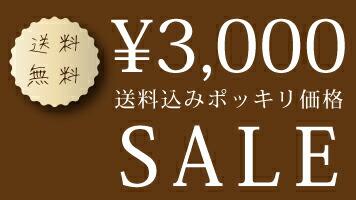 3,000円送料無料セール