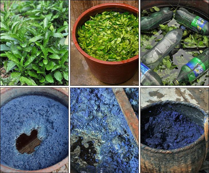 藍染め原料