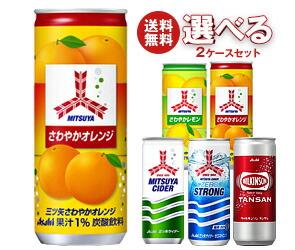 【送料無料】 アサヒ飲料 三ツ矢・ウィルキンソン 選べる2ケースセット 250ml缶×40(20×2)本入 ※北海道・沖縄・離島は別途送料が必要。