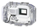 """Marion Panasonic DMW-MCFT5 case """"2 ~ 3 business days after shipping, 40 m waterproof housing fs3gm"""