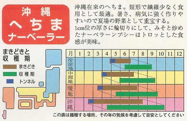 へちま種 沖縄へちま (10ml)