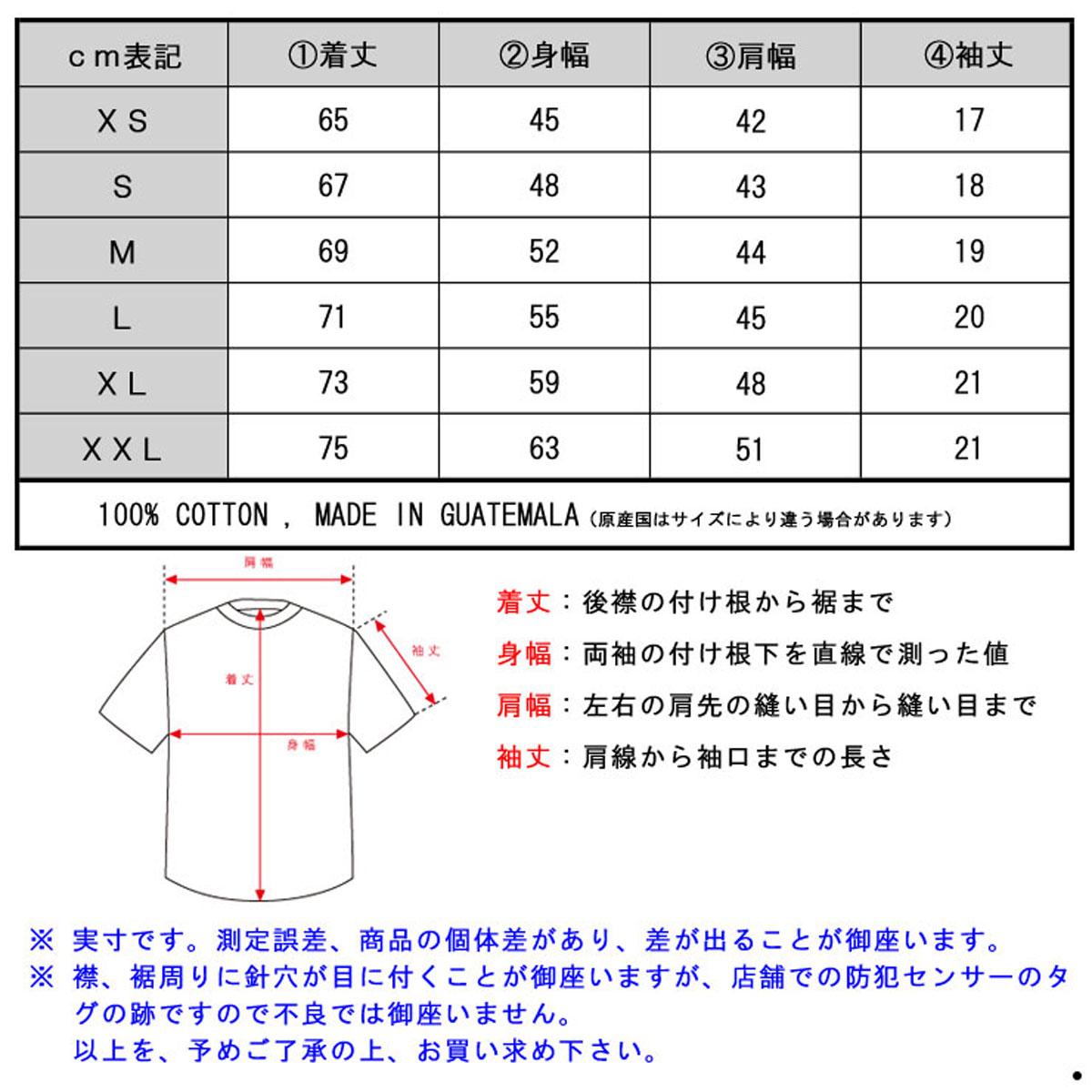 デニムアンドサプライラルフローレン DENIM&SUPPLY RALPH LAUREN 正規品 メンズ 半袖Tシャツ COTTON JERSEY GRAPHIC TEE
