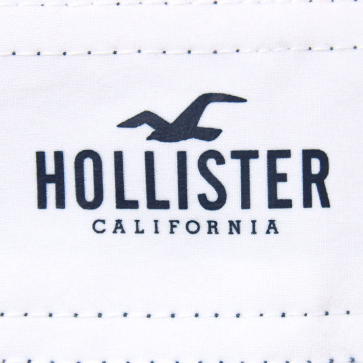 hollister_mens_7