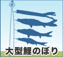 大型鯉のぼり