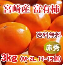 宮崎産富有柿