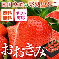 宮崎県産 完熟大粒いちご おおきみ