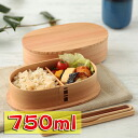 Akita Cedar bend Odate magewappa oval lunch Bento box (large)