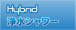 Hybrid���奷��